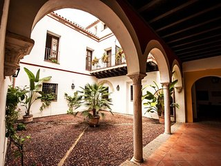 Apartment in the center of Córdoba with Air conditioning, Lift, Parking, Garden - Cordoba vacation rentals