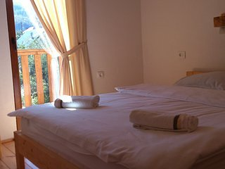 Bright 1 bedroom Resort in Kolasin with Internet Access - Kolasin vacation rentals