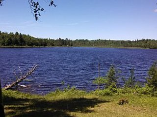 Family Lakeside Cabin Private Lake and Acerage Fishing Hiking Hunting and Nature - Crystal Falls vacation rentals