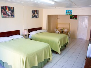 The Irie Inn Room 4,  Montego Bay, Jamaica - Montego Bay vacation rentals