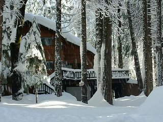 Enjoy this Dorrington Mountain Cabin!  Everything you need, a perfect escape! - Dorrington vacation rentals