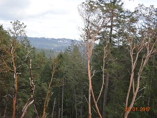 Happy Valley 3BD Retreat - Now on Sale! NEW LISTING! - Metchosin vacation rentals