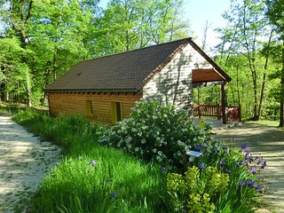 Nice House with Internet Access and Television - La Chapelle-Aubareil vacation rentals