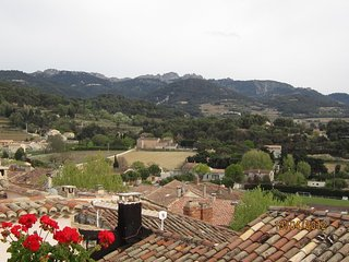 SPECIAL OFFER July and August , 2 terraces, 2bedrooms, 2 bathrooms. 180° views. - Sablet vacation rentals