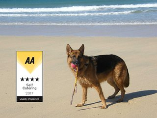 Dolphin Pet Friendly Bungalow 150 yards from beach - Hayle vacation rentals