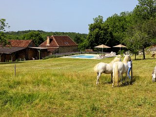 3 bedroom Villa with Internet Access in Tourtoirac - Tourtoirac vacation rentals