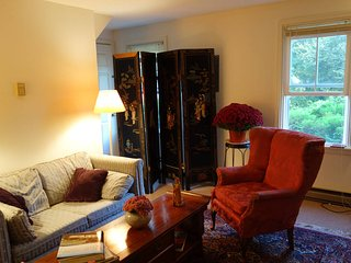 1 bedroom Apartment with Internet Access in Chestertown - Chestertown vacation rentals