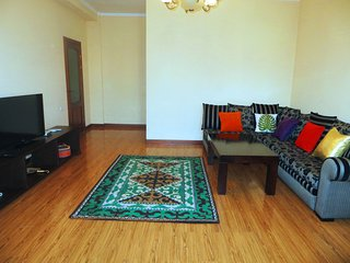 The best apartment in the center - Bishkek vacation rentals