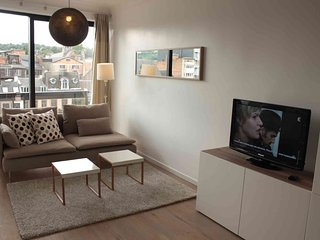 Studio apartment 161 m from the center of Liège with Washing machine (445683) - Liege vacation rentals