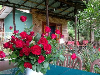 Very silent place.likely as your home with birds. - Bandarawela vacation rentals