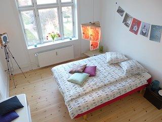 Romantic 1 bedroom Condo in Copenhagen - Copenhagen vacation rentals