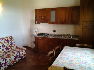 ORCHIDEA appartamento Vacanze in Toscana - Cascina vacation rentals
