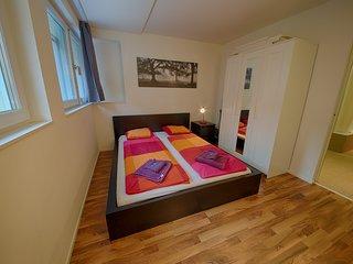 ZH Badenerstrasse V - HITrental Apartment Zurich - Prichovice vacation rentals