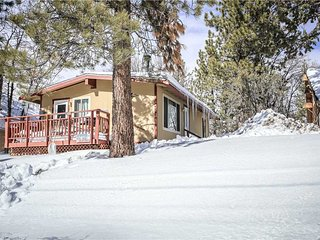 Cozy Mountain Getaway - Big Bear Lake vacation rentals