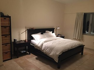 Large master bedroom with ensuite bath. Close to both old and new Dubai! - Dubai vacation rentals