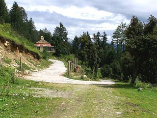 crown royal cottage,banikhet,dalhousie,INDIA - Dalhousie vacation rentals