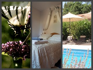 Luxury 4*  holiday apartment with pool - beautiful garden - Aups - Aups vacation rentals