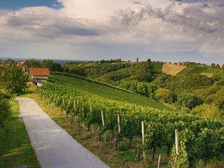 Turistična kmetija Dervarič- vinefarm - Strigova vacation rentals
