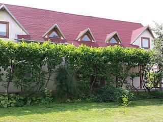 Fecskefészek - Cozy home in a Transylvanian village - Viisoara vacation rentals