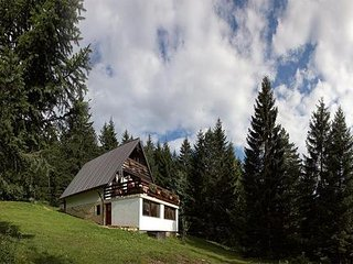 Nice 2 bedroom House in Ravna Gora - Ravna Gora vacation rentals
