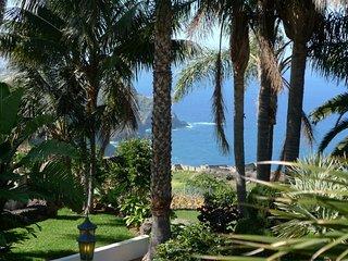 Luxury villa with amazing views - La Matanza de Acentejo vacation rentals