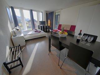 LU Nadelwehr II - Allmend HITrental Apartment Lucerne - Lucerne vacation rentals