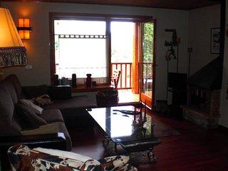 Perfect 3 bedroom Condo in Osseja - Osseja vacation rentals