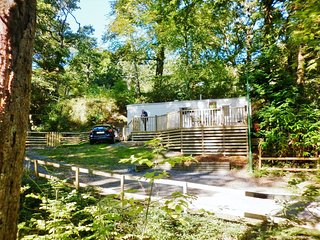 Snowdonia National Park, lovely woodland location - Prenteg vacation rentals