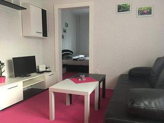 Romantic 1 bedroom Apartment in Hlucin - Hlucin vacation rentals