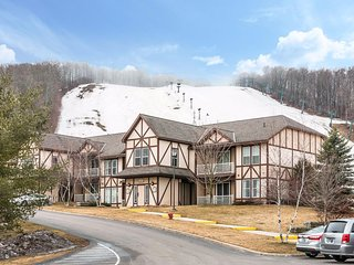Michigan skiing - two rooms available - due to warmth going cheap.($50/nite) - Boyne Falls vacation rentals