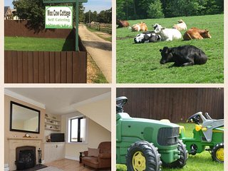 Moo Cow Cottage- self catering - Stretton vacation rentals