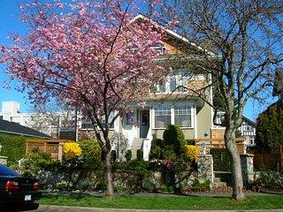 Escape winter in Victoria BC  Canada(Fairfield) - Victoria vacation rentals