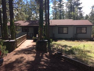 Bright Pinetop vacation House with Satellite Or Cable TV - Pinetop vacation rentals