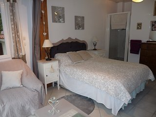 Chez Zoe, Les Libellules airconditioned apartment with pool and spectacular view - Montpeyroux vacation rentals