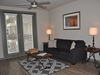 Luxury 1 bedroom 1 bath Med center M0517 - West University Place vacation rentals