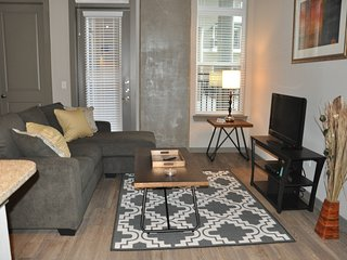 Luxury 2 bedroom Med Center M0240 - Super BOWL - West University Place vacation rentals