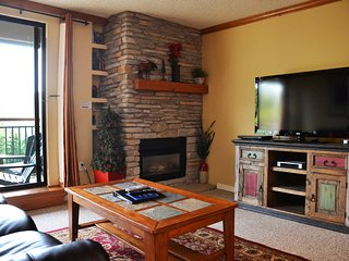 Ski In/Ski Out! Mountain View, Walk2Town, Upgraded - Breckenridge vacation rentals