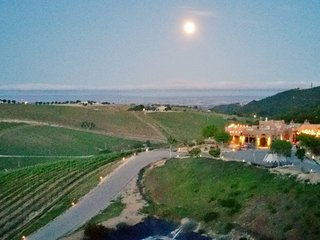 Wild Coyote Winery Guest House - Paso Robles vacation rentals