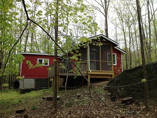 2 BR Cabin, Hot Tub, Fireplace, Heart of Woodstock - Woodstock vacation rentals