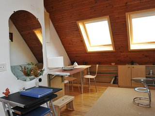 Bright studio apartment Jurij with AC and parking - Trzin vacation rentals
