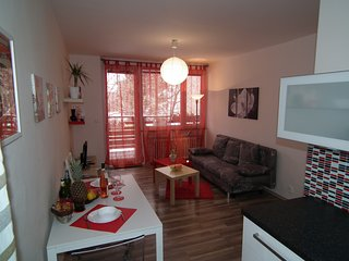 Nice Condo with Internet Access and Central Heating - Prague vacation rentals