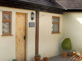 Fig Tree Cottage - Conwy vacation rentals