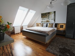 SUPER CENTRAL NEW PENTHOUSE*ST STEPHENS 4 minutes*2BED2BATH*LIFT*QUIET*TERRACE* - Wienerbruck vacation rentals