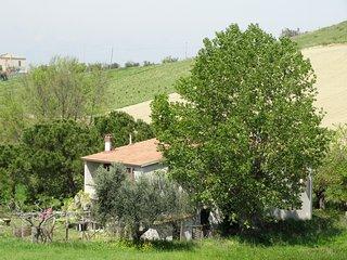Landelijk gelegen zeer ruime vakantiewoning, 6 km van de Adriatische zee. - Pineto vacation rentals