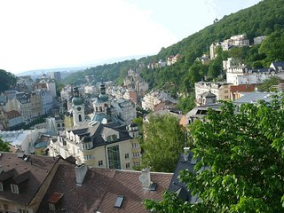 Wow! What a wonderful view! Big kitchen. For 4 people - Karlovy Vary vacation rentals