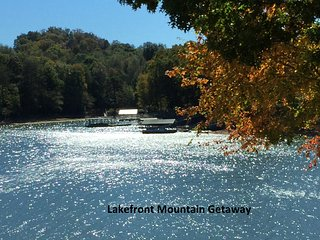 Lakefront Spacious Suite - 1BR, 2Queens +1BA. Den + Microwave, minifridge - Hiawassee vacation rentals