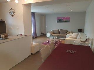 appartement 100m² 3km de Paris - Arcueil vacation rentals