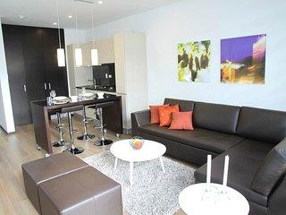 T2 meublé design refait à neuf Scionzier, proche Cluses - Scionzier vacation rentals