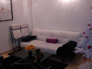 studio mezzanine 23m2 dans maison indépendante proche CDG - Sevran vacation rentals