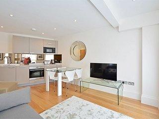 Brand New Soho Apartment Apt 8 - London vacation rentals